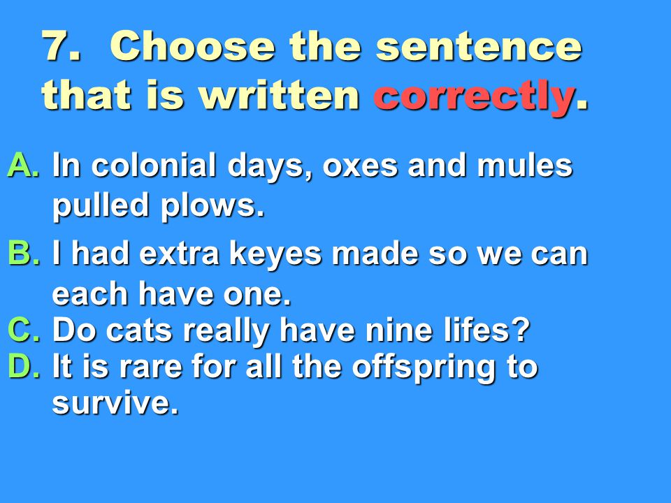7. Choose the sentence that is written correctly.