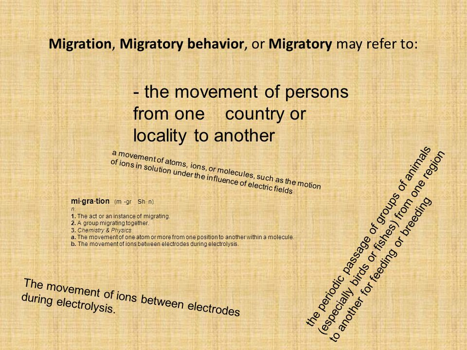 Migration, Migratory behavior, or Migratory may refer to: