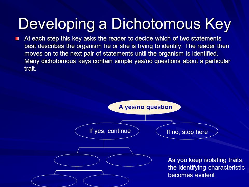 Developing a Dichotomous Key
