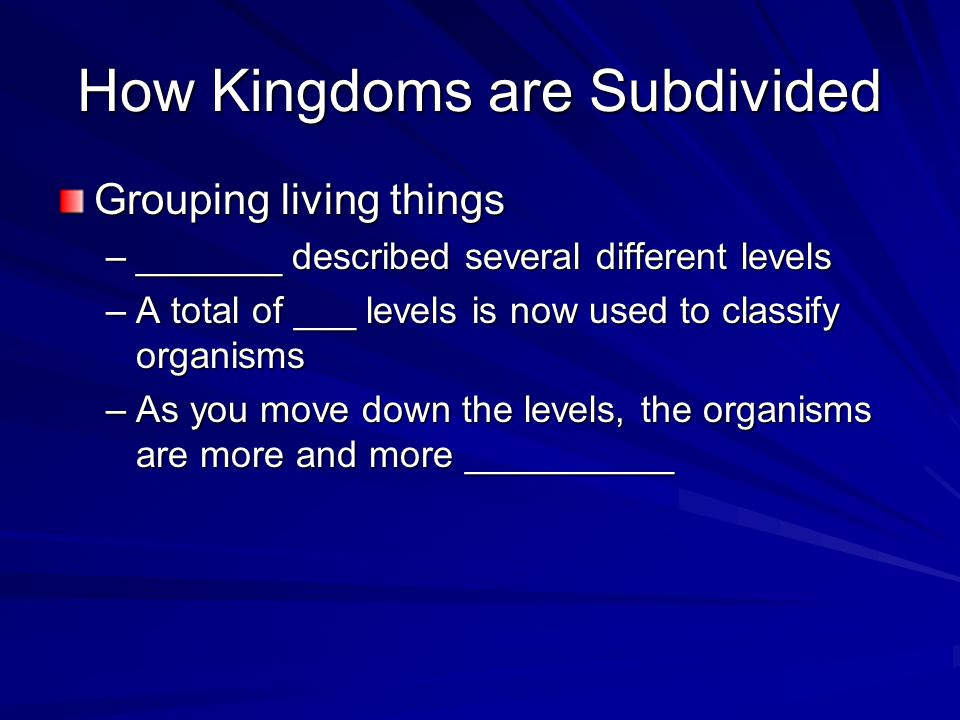 How Kingdoms are Subdivided
