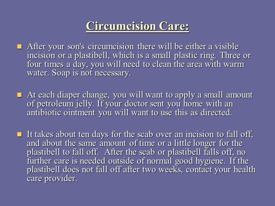 Circumcision Care: