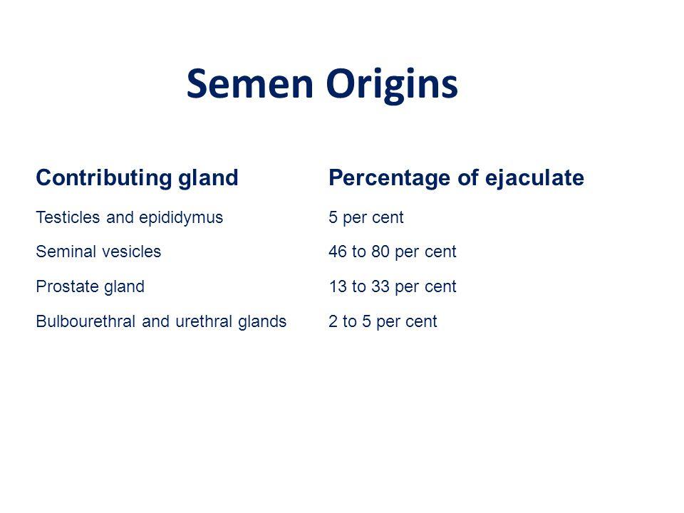 Semen Origins Contributing gland Percentage of ejaculate