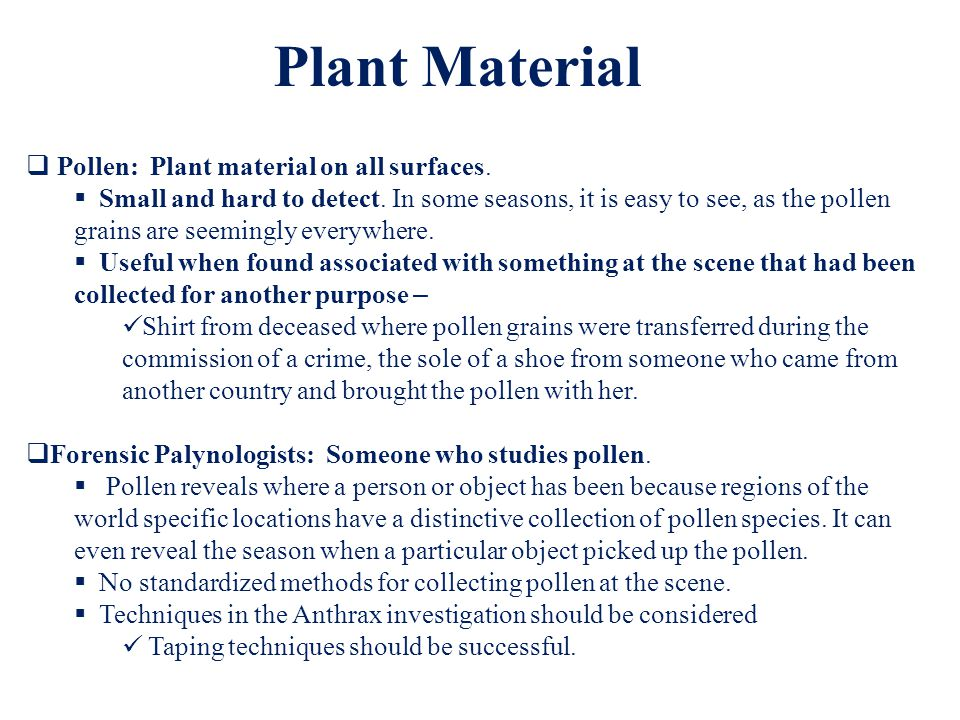 Plant Material Pollen: Plant material on all surfaces.