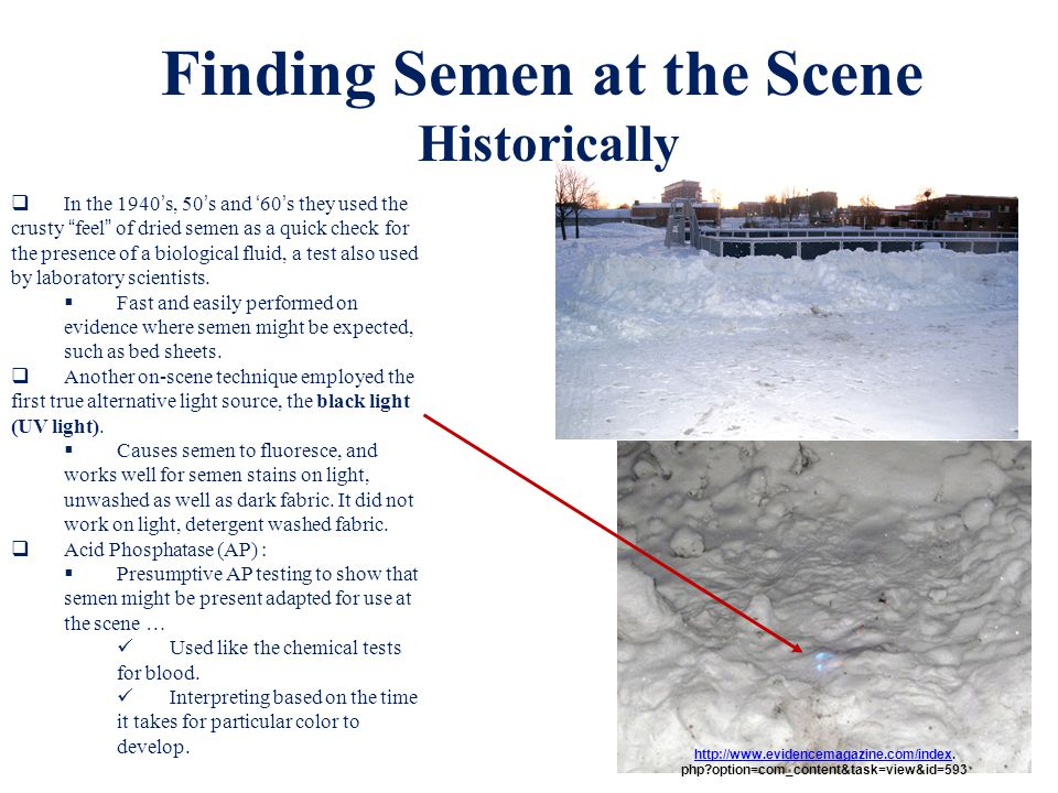 Finding Semen at the Scene php option=com_content&task=view&id=593