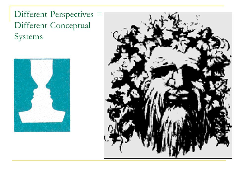 Different Perspectives = Different Conceptual Systems