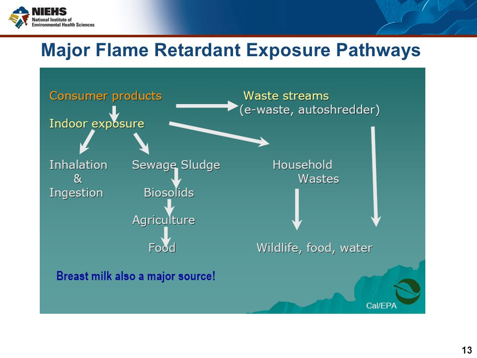 Major Flame Retardant Exposure Pathways
