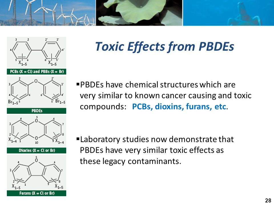 Toxic Effects from PBDEs