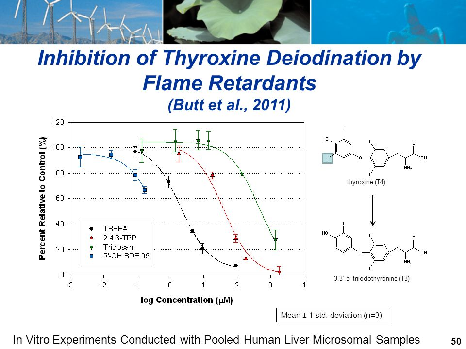 Inhibition of Thyroxine Deiodination by
