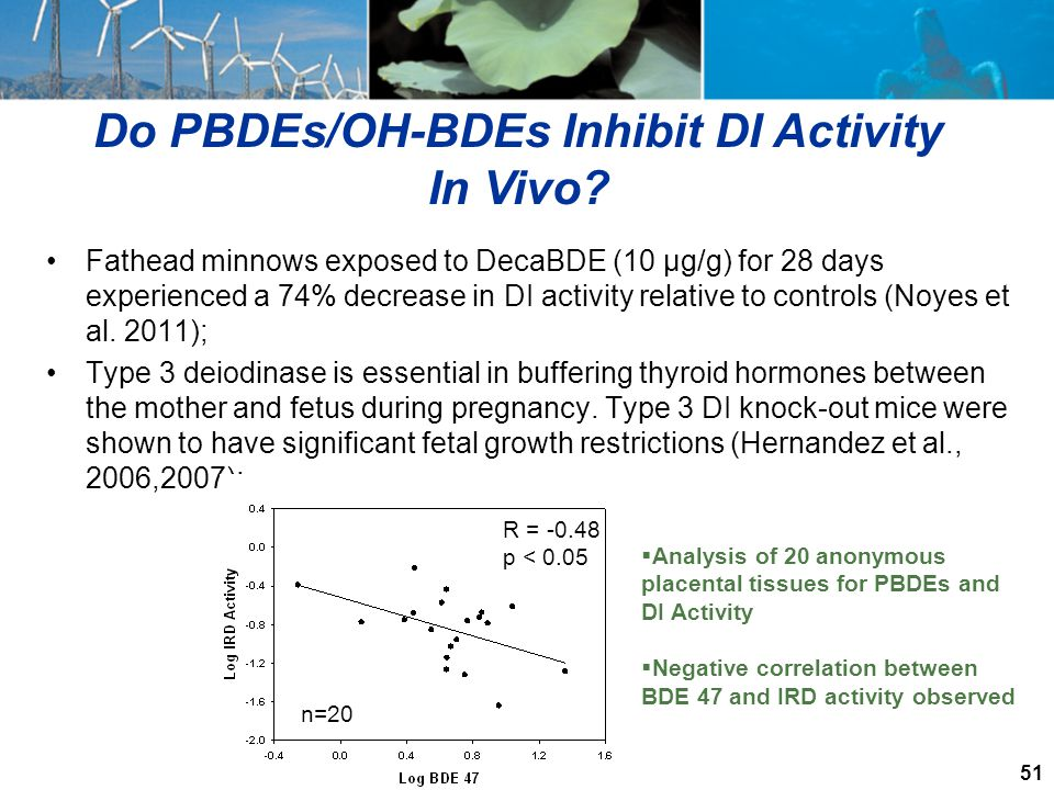Do PBDEs/OH-BDEs Inhibit DI Activity