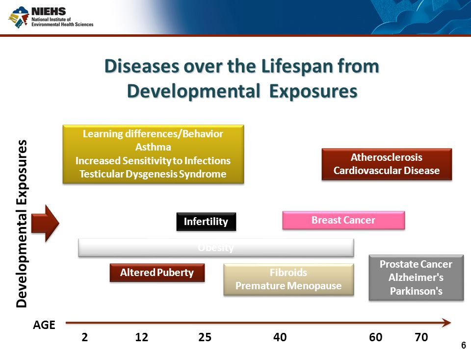 Diseases over the Lifespan from Developmental Exposures