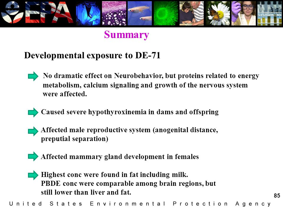 Summary Developmental exposure to DE-71