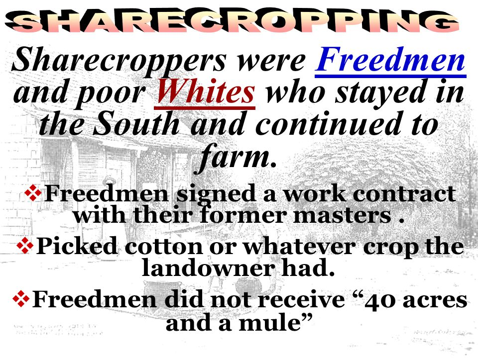 SHARECROPPING Sharecroppers were Freedmen and poor Whites who stayed in the South and continued to farm.