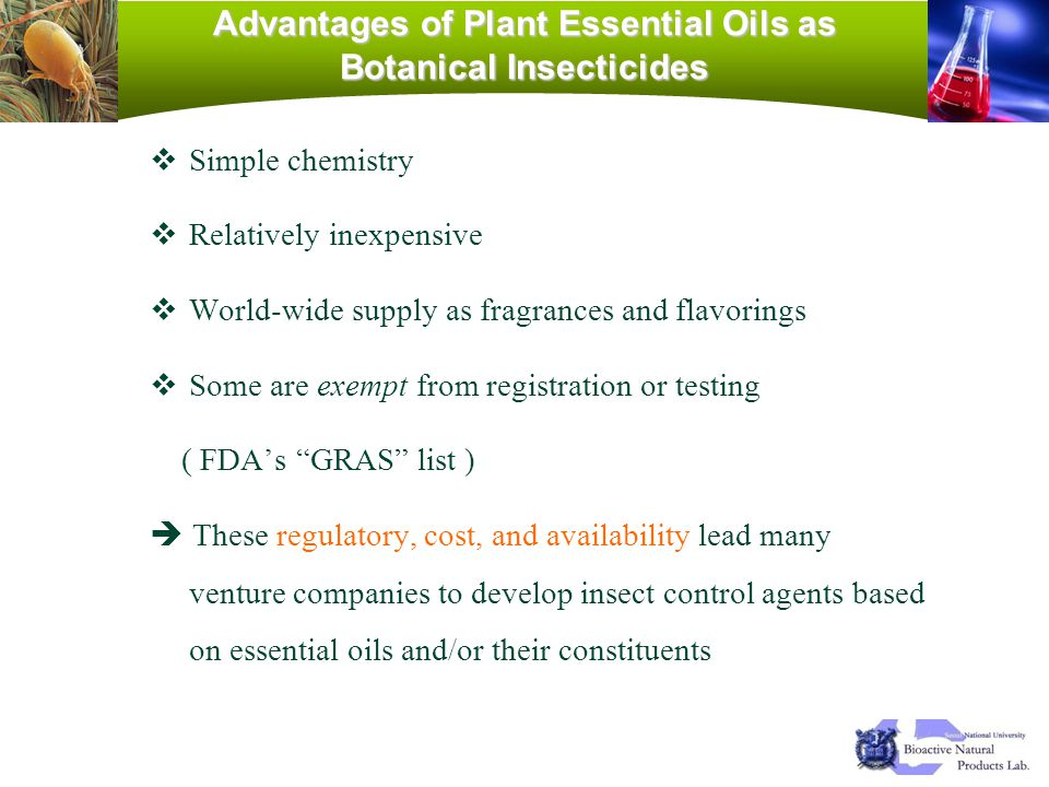 Advantages of Plant Essential Oils as Botanical Insecticides