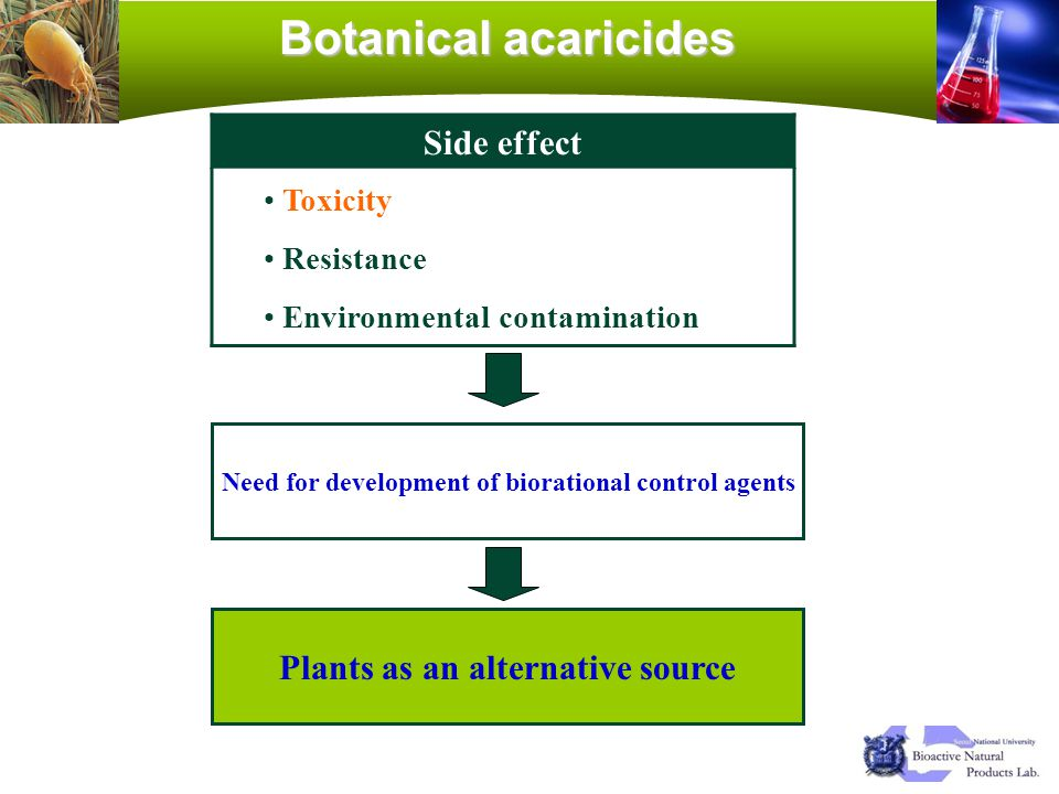 Botanical acaricides Side effect Plants as an alternative source