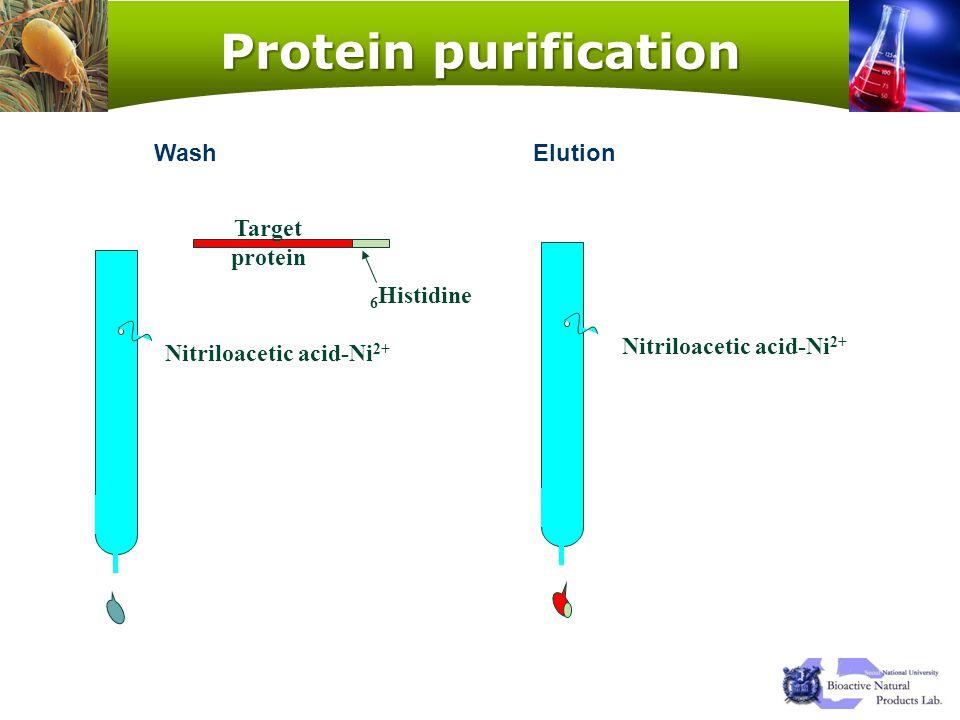 Nitriloacetic acid-Ni2+ Nitriloacetic acid-Ni2+