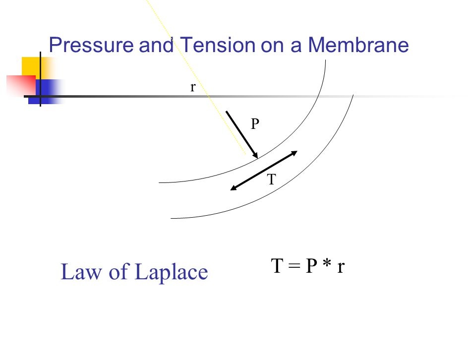 Pressure and Tension on a Membrane