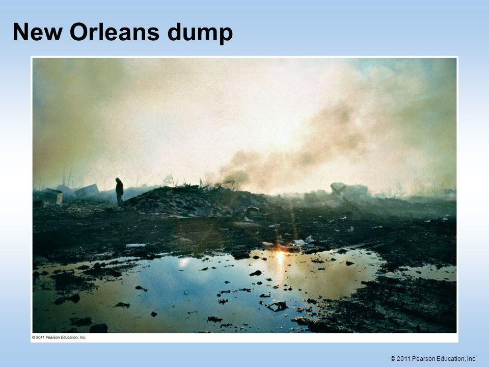 New Orleans dump
