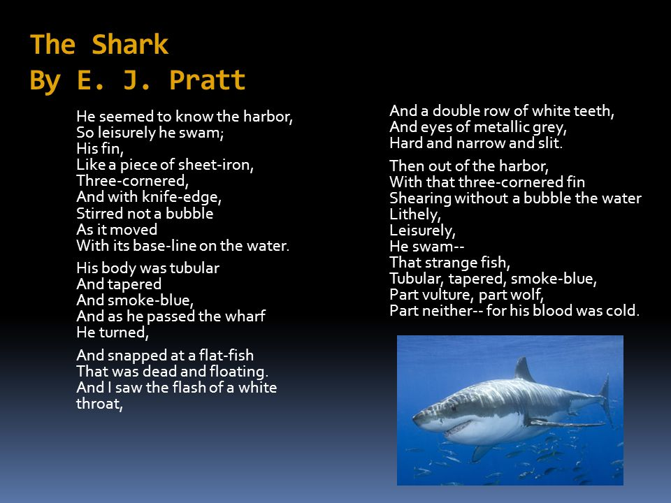 The Shark By E. J. Pratt And a double row of white teeth, And eyes of metallic grey, Hard and narrow and slit.