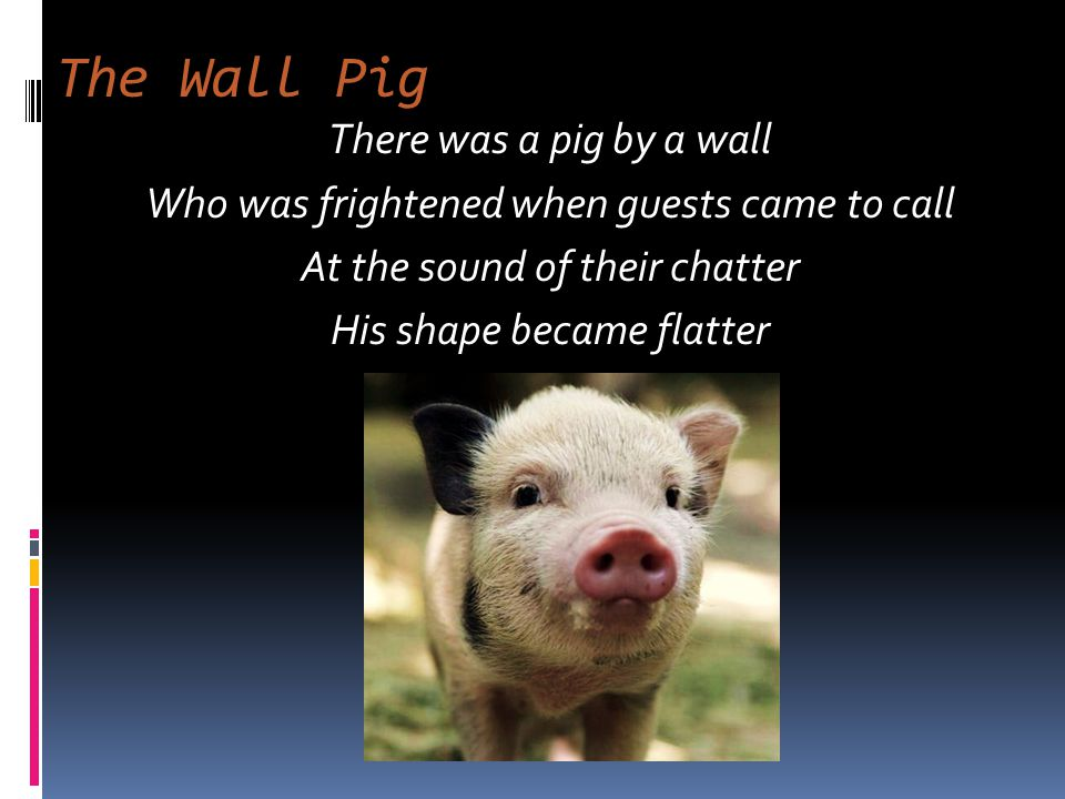 The Wall Pig There was a pig by a wall Who was frightened when guests came to call At the sound of their chatter His shape became flatter