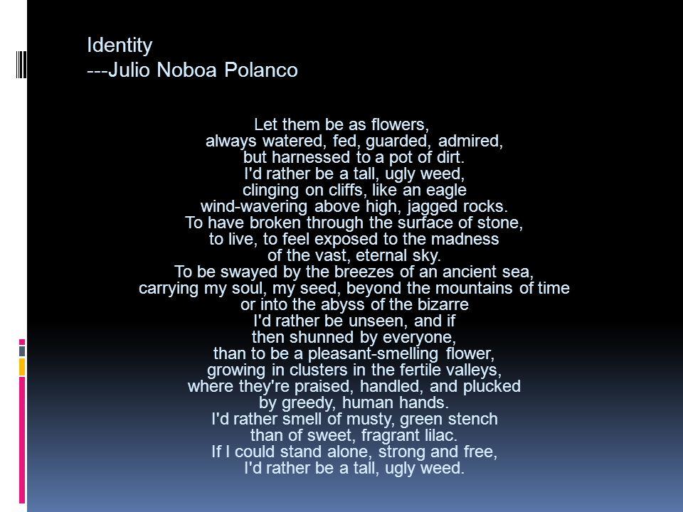 Identity ---Julio Noboa Polanco