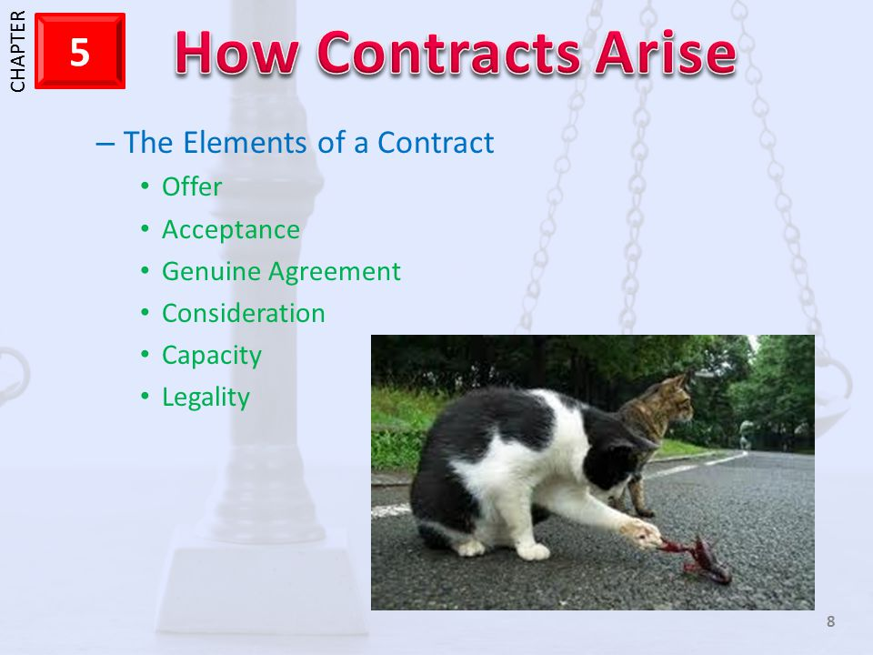 The Elements of a Contract