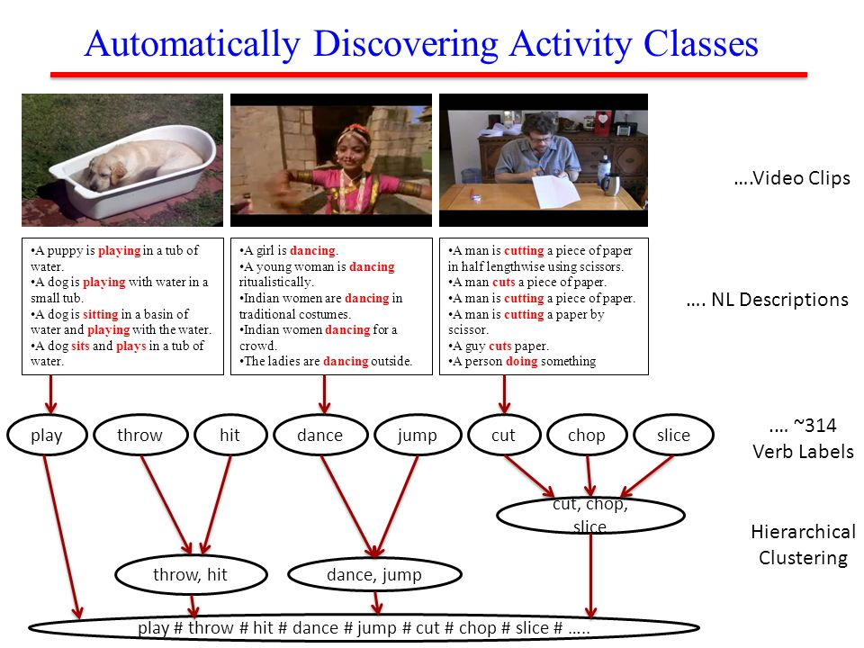 Automatically Discovering Activity Classes