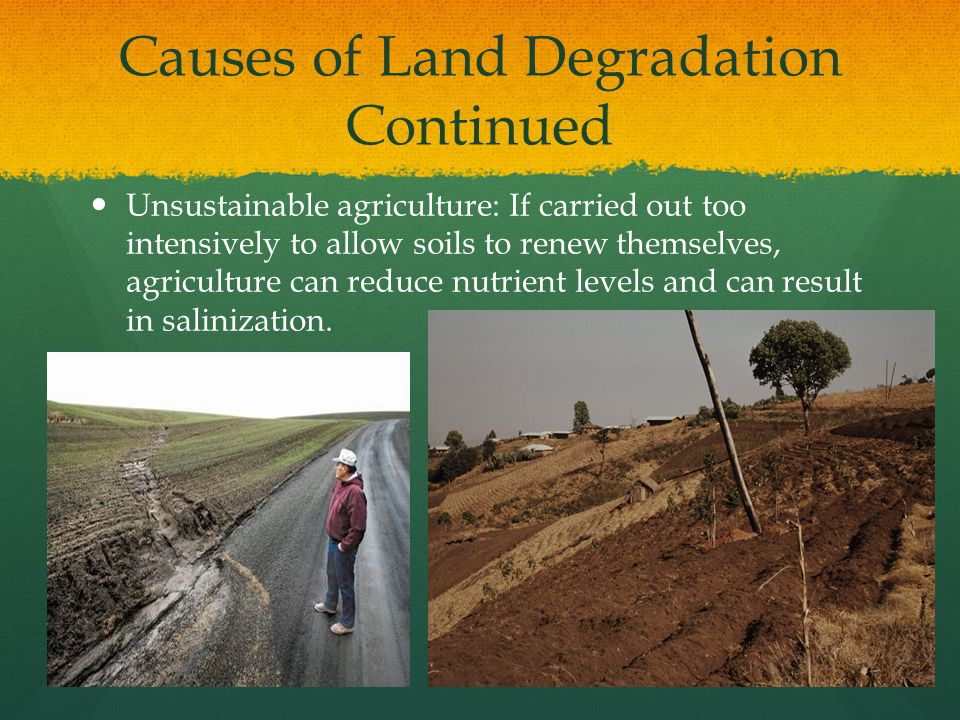 Causes of Land Degradation Continued