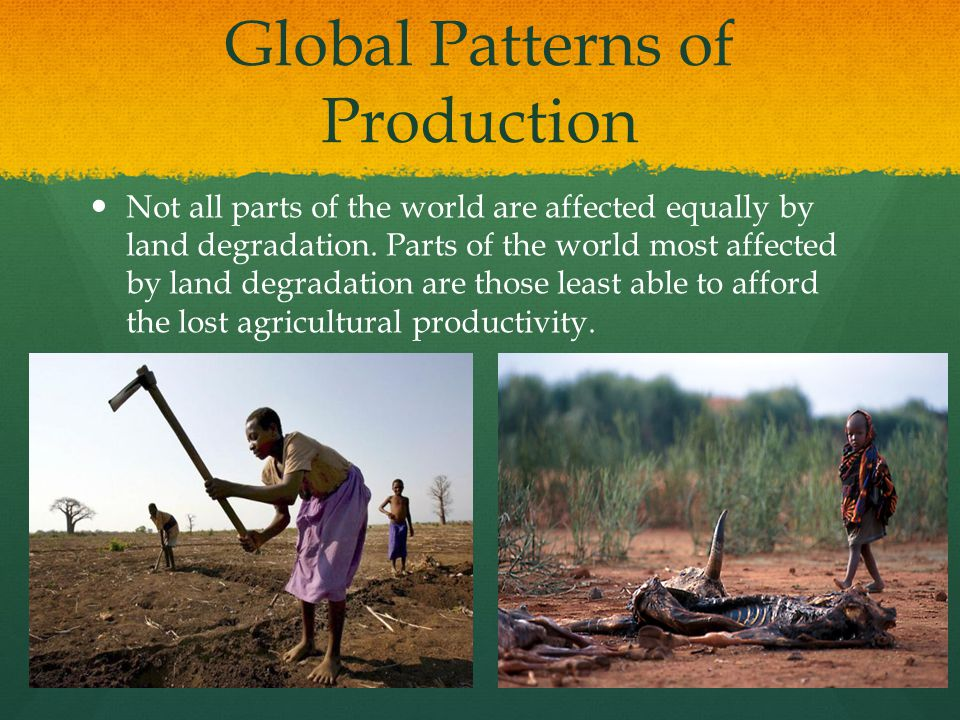 Global Patterns of Production
