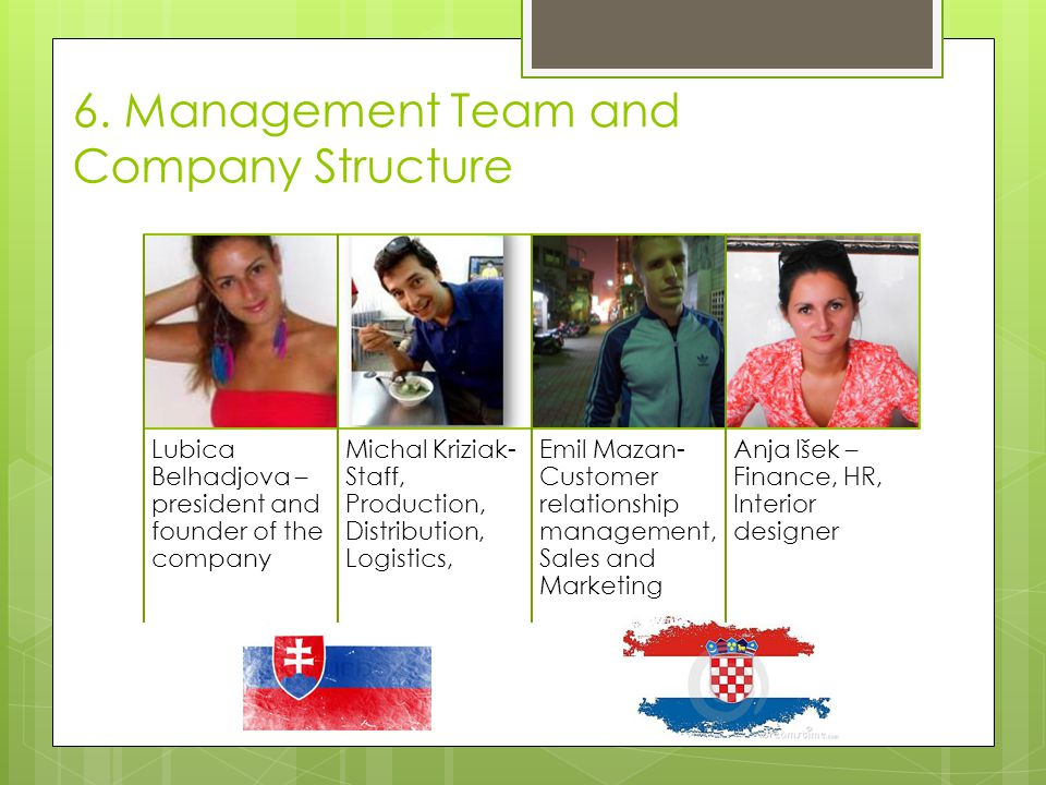 6. Management Team and Company Structure