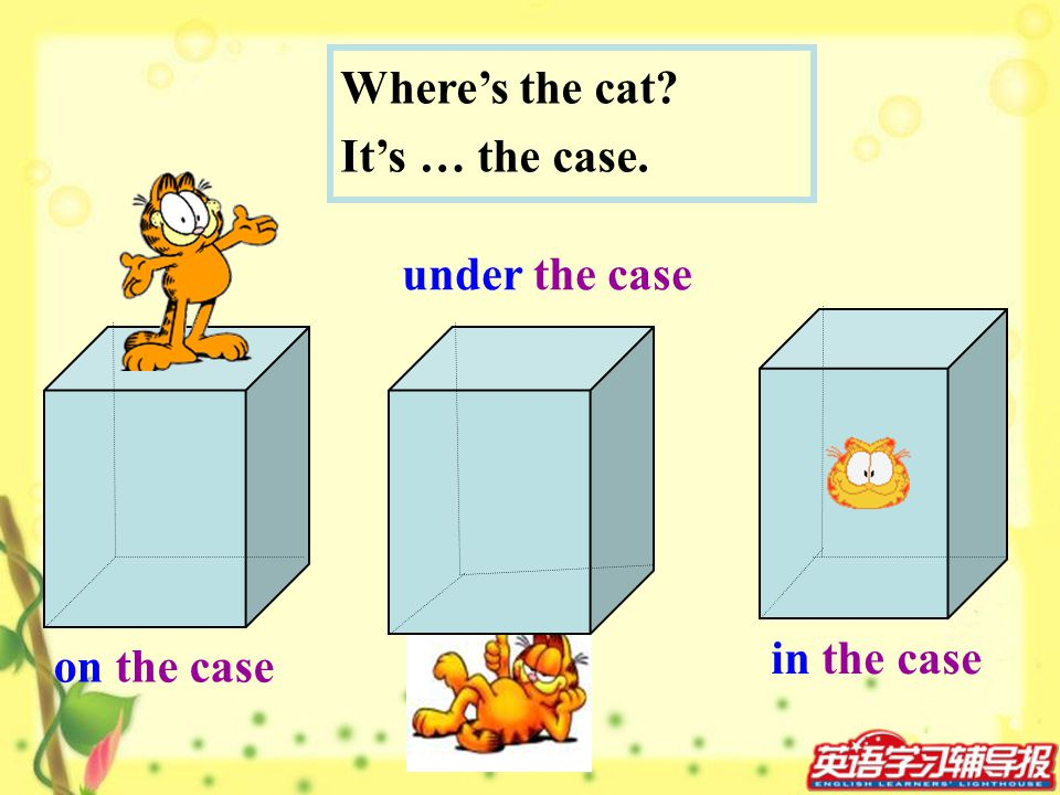Where's the cat It's … the case. under the case in the case on the case