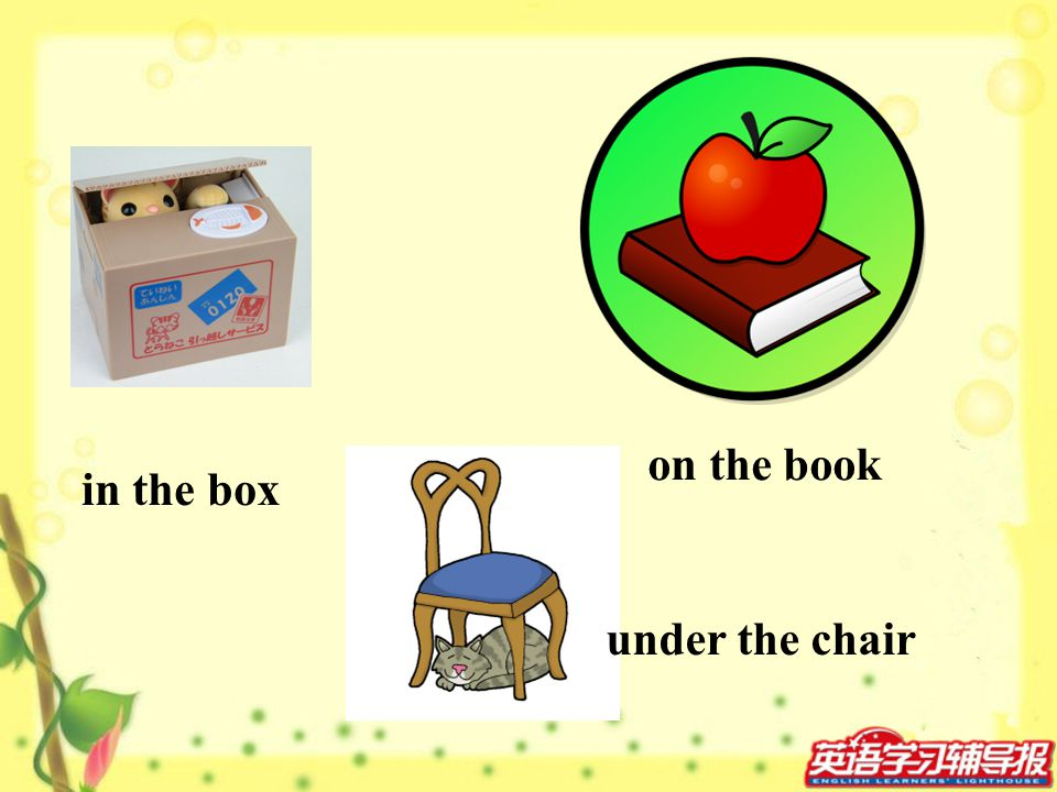 on the book in the box under the chair