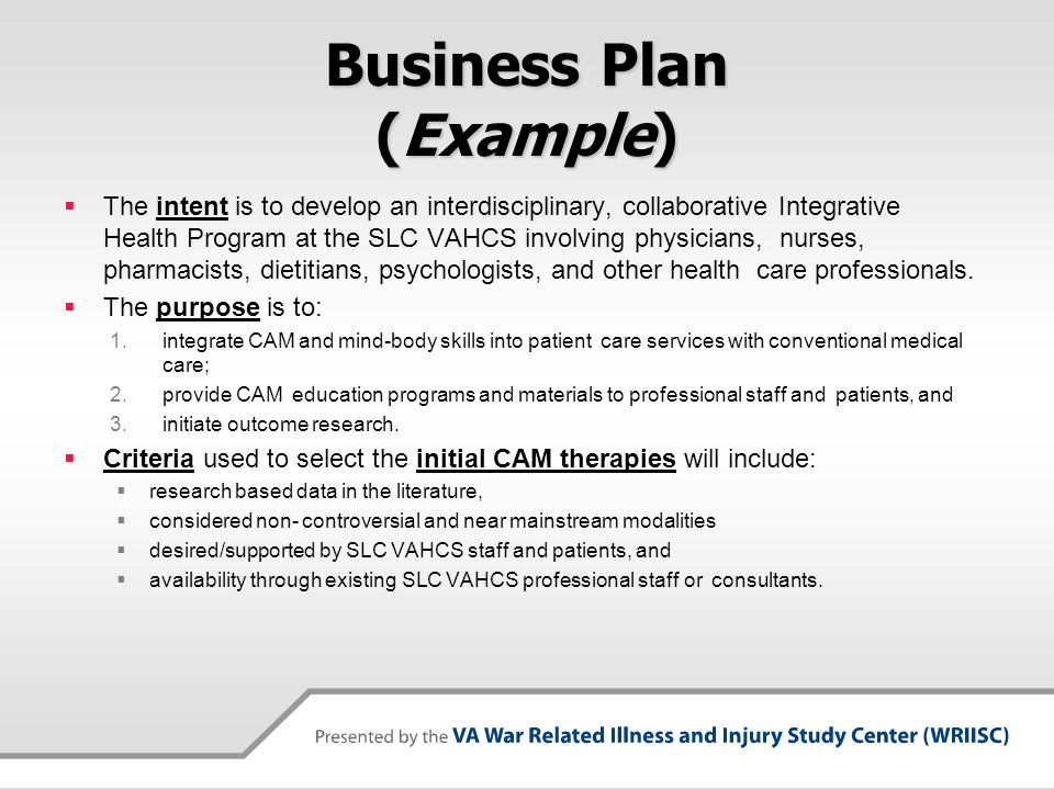 Developing An Integrative Health Clinic And Program VASLCHCS Ppt - Healthcare business plan template