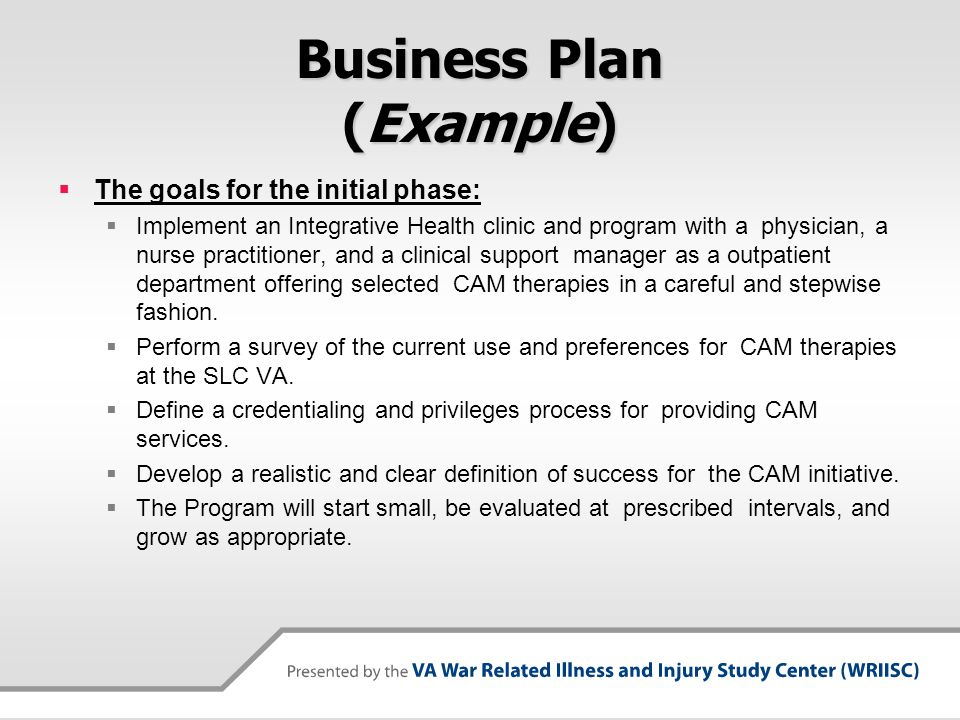 Business Plan (Example)