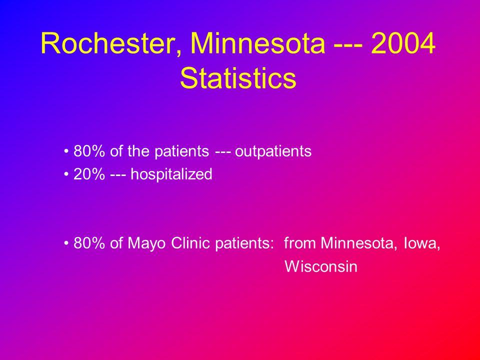 Rochester, Minnesota --- 2004 Statistics