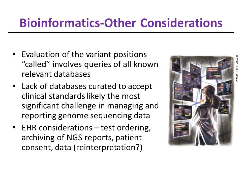 Bioinformatics-Other Considerations