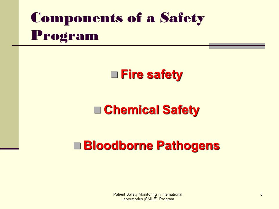 Components of a Safety Program