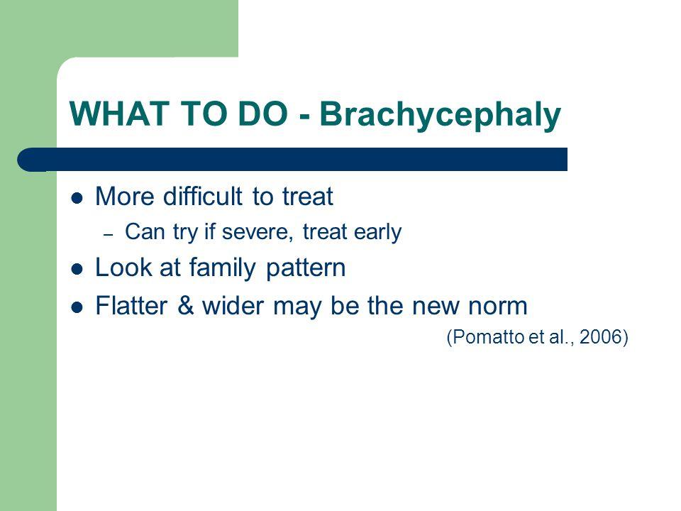 WHAT TO DO - Brachycephaly