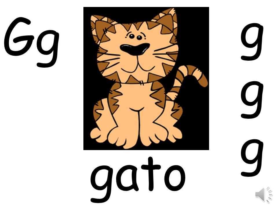 g Gg gato