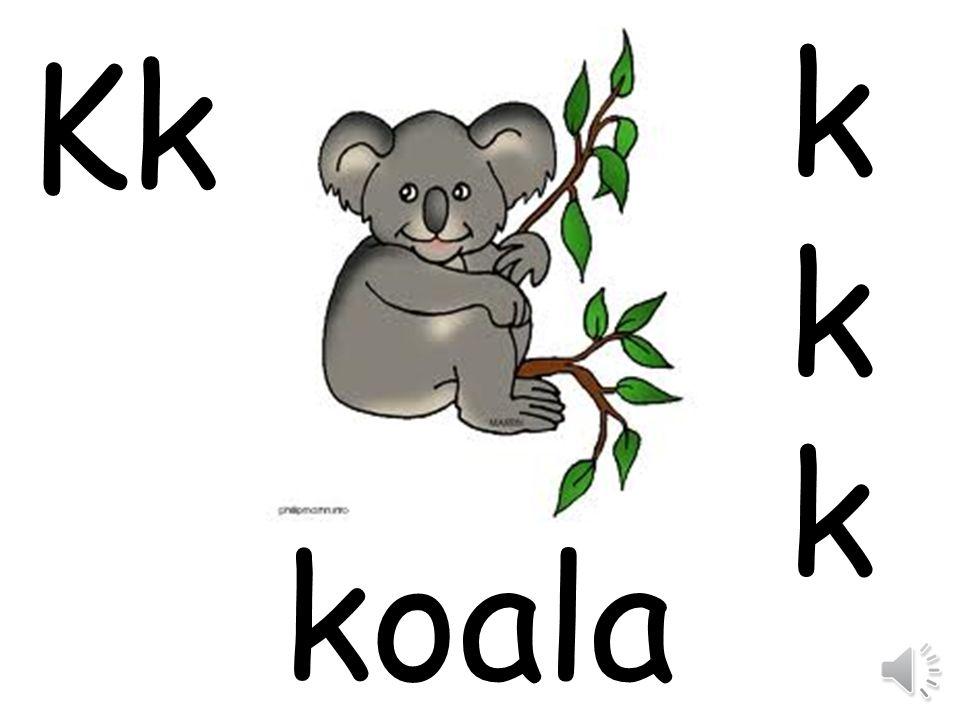 k Kk koala