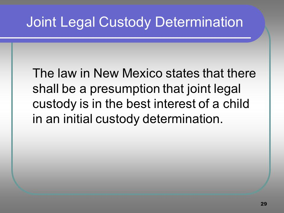 Joint Legal Custody Determination