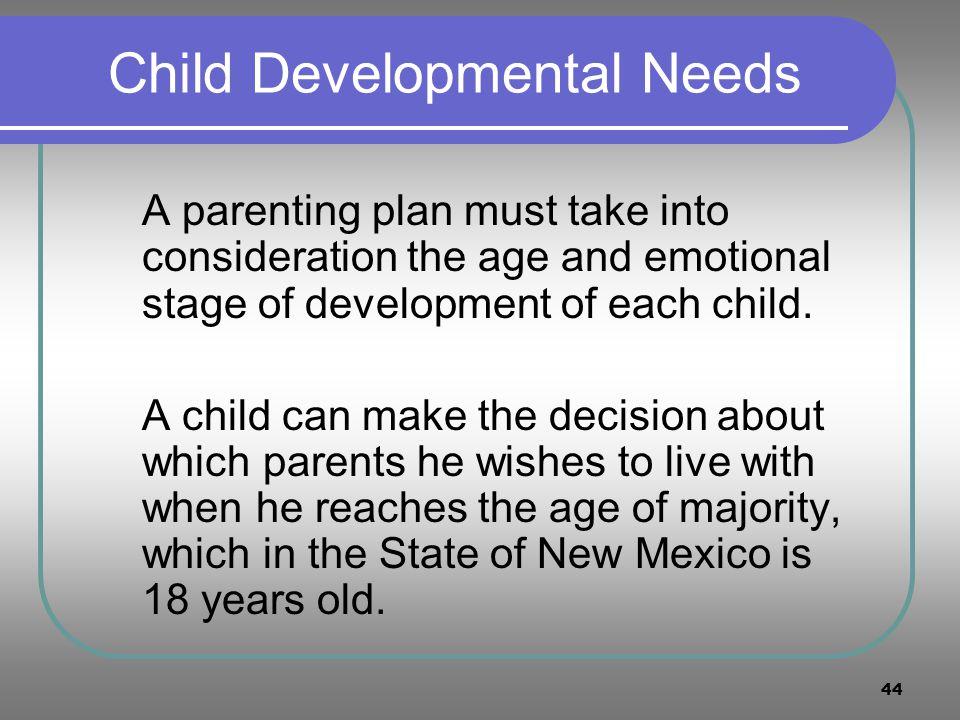 Child Developmental Needs