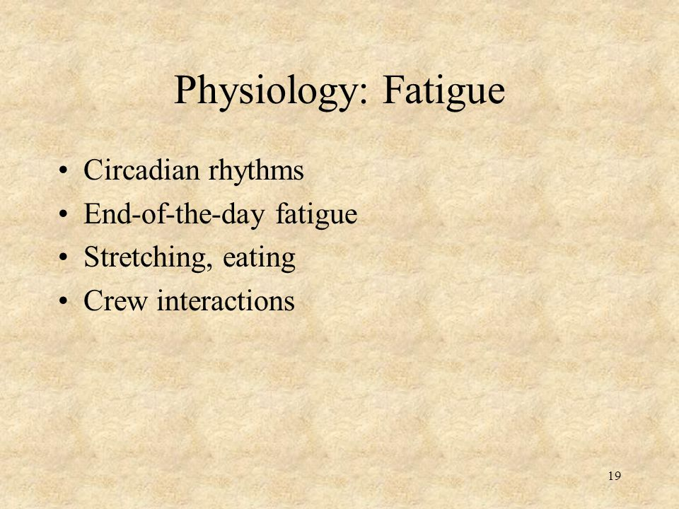 Physiology: Fatigue Circadian rhythms End-of-the-day fatigue