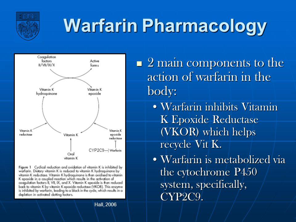 Warfarin Pharmacology