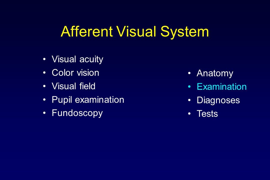 Afferent Visual System