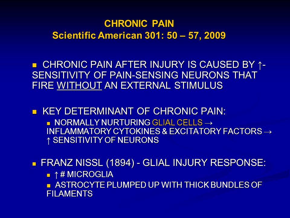 CHRONIC PAIN Scientific American 301: 50 – 57, 2009