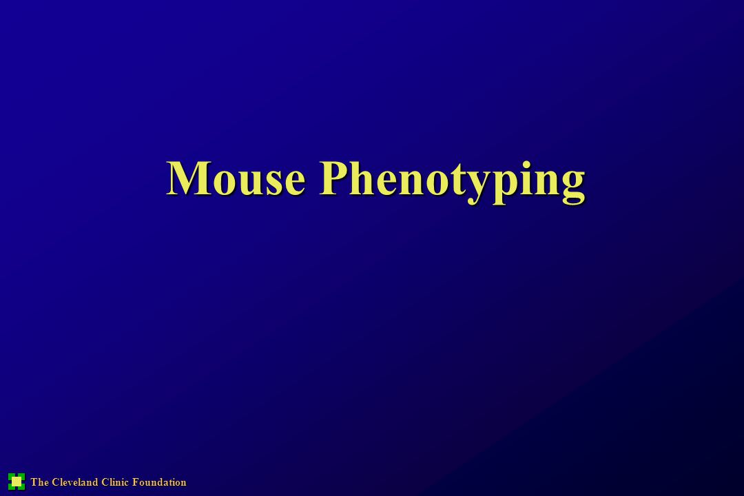 Mouse Phenotyping