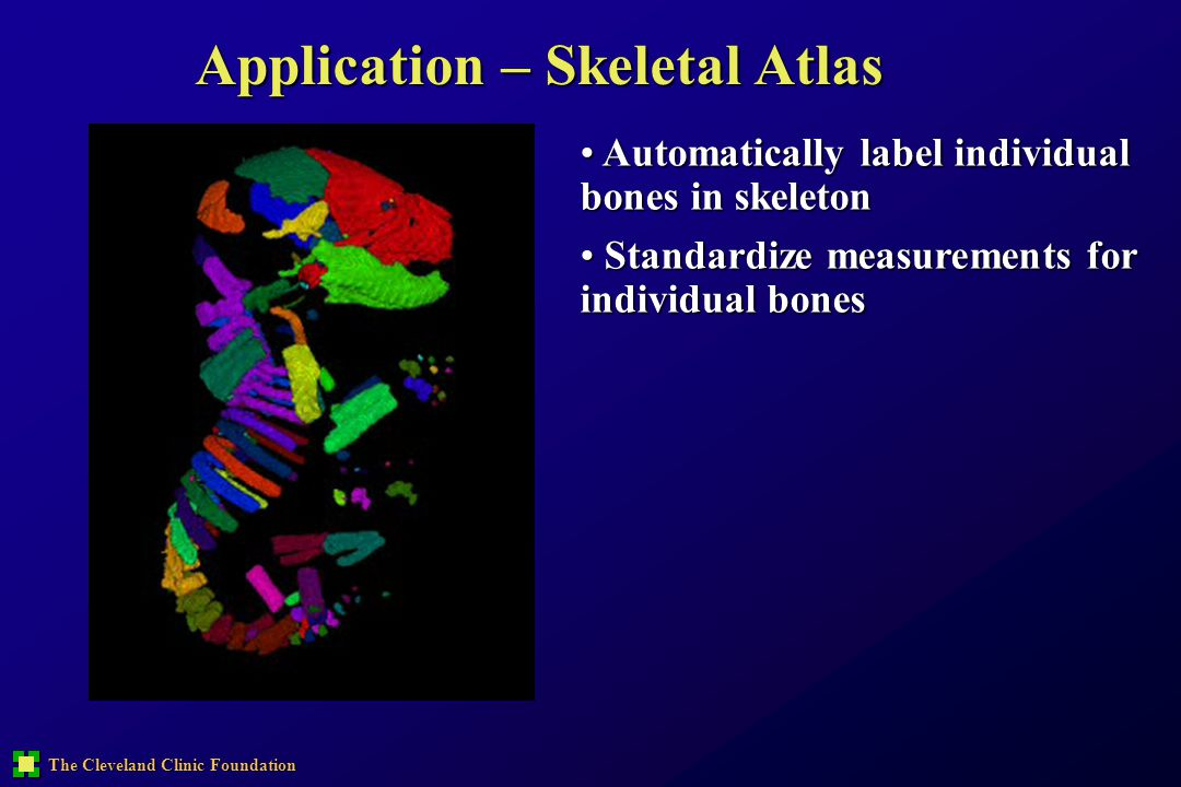 Application – Skeletal Atlas