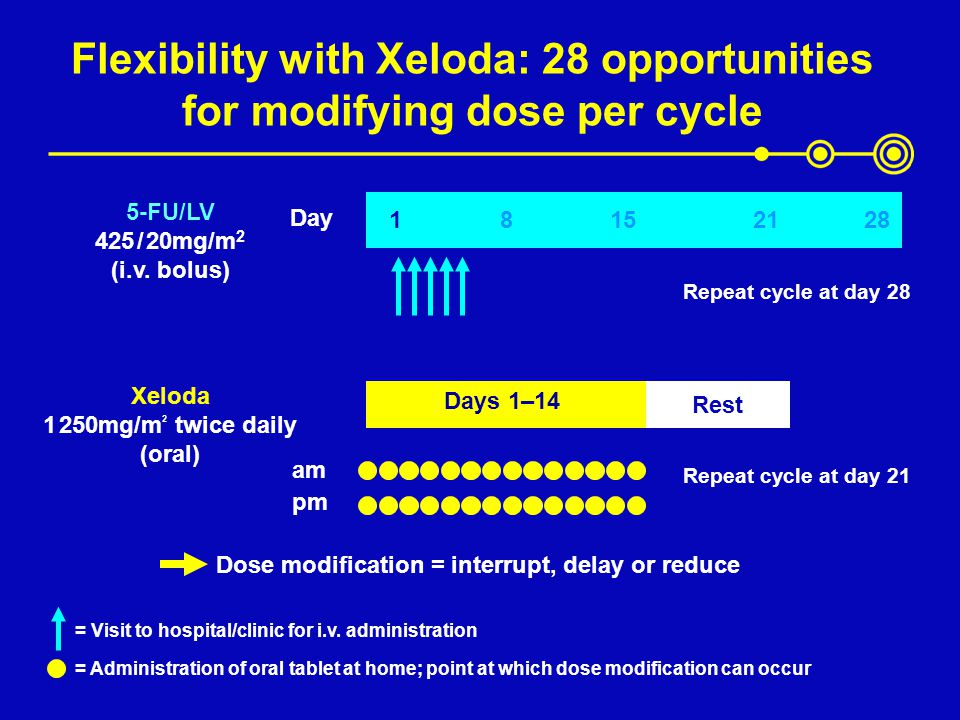 Flexibility with Xeloda: 28 opportunities for modifying dose per cycle