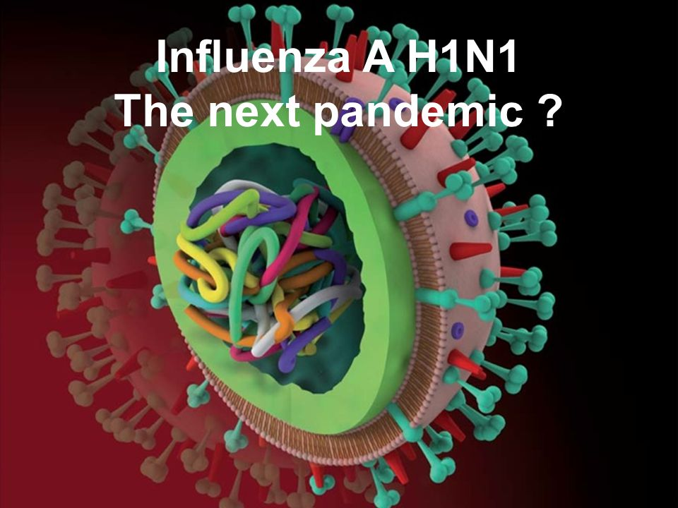 Influenza A H1N1 The next pandemic
