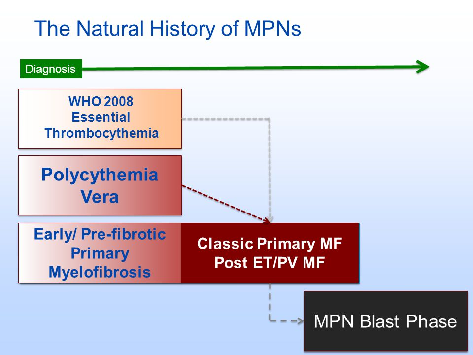 The Natural History of MPNs